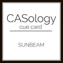 CASology309_logo