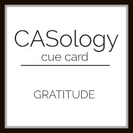 Casology315_logo